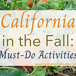 California in the Fall: Must-Do Activities
