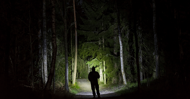 Man in forest with flashlight