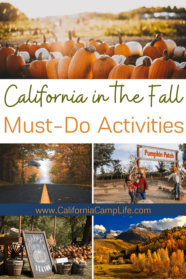 California in the Fall: Must-Do Activities Collage