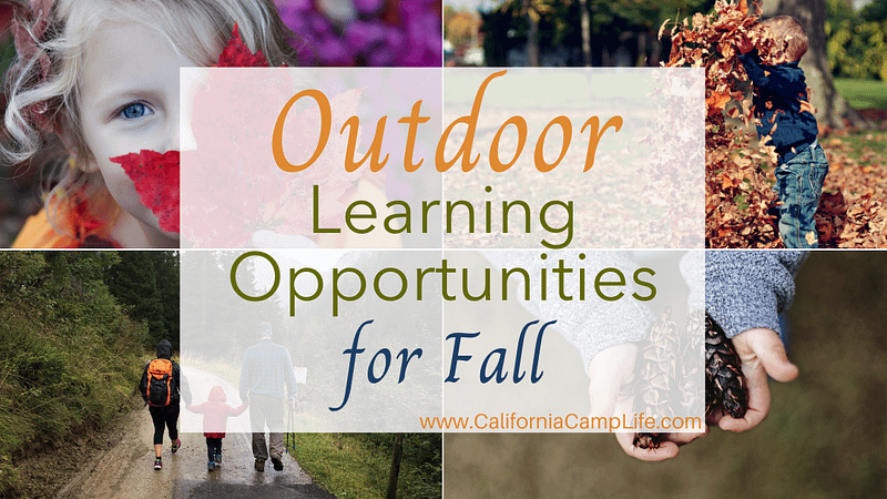 Outdoor Learning Opportunities for Fall
