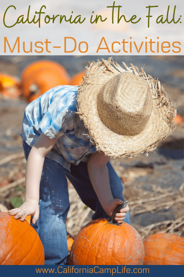 Kid with a straw hat at a pumpkin patch
