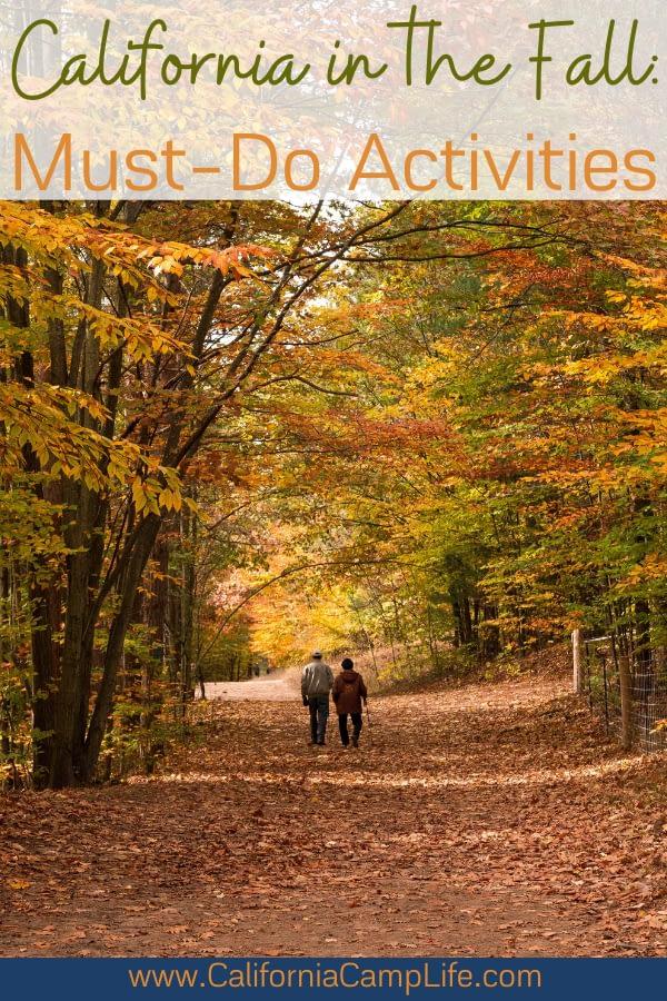 A couple walking through Fall trees